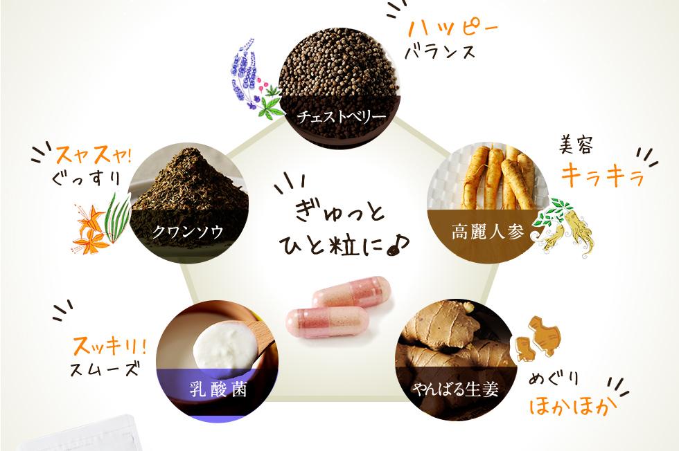 チェストベリー、高麗人参、クワンソウ、やんばる生姜、乳酸菌をぎゅっとひと粒に
